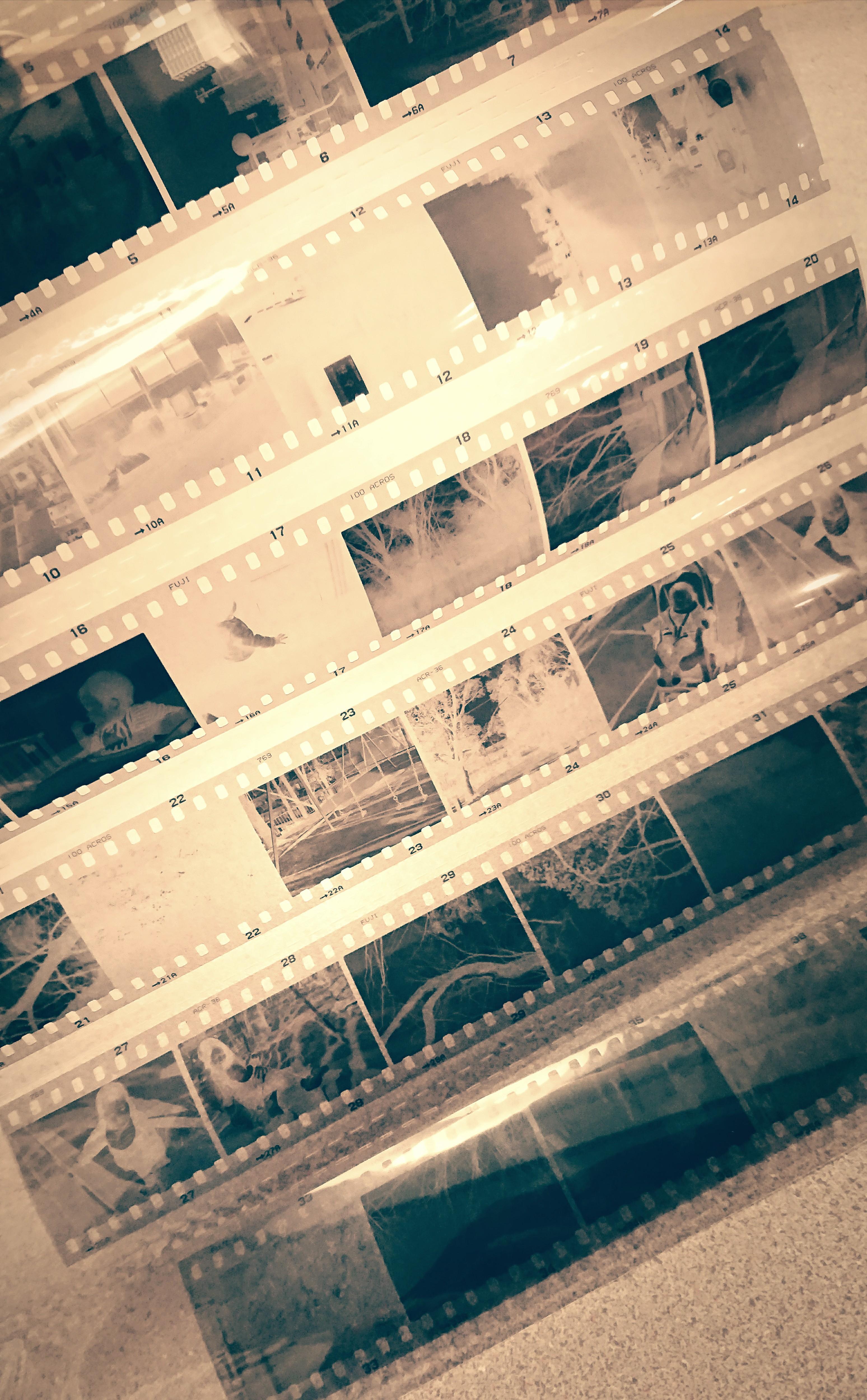 それはフィルムカメラを始めて最も印象的な出来事だった【初自家現像】
